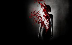black-background-a-girl-reincarnation-the-dilution-rose-petals-774.large